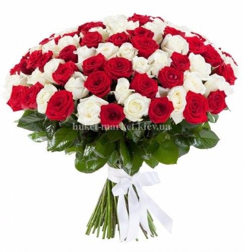 101 красная и белая роза - 50 см
