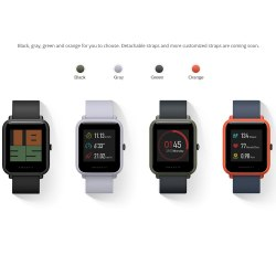 Умные часы Xiaomi Huami Amazfit Bip (International Version)