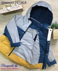 Деми куртка на мальчика модель - 1073KC