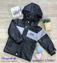 Деми куртка на мальчика модель - 1244KC