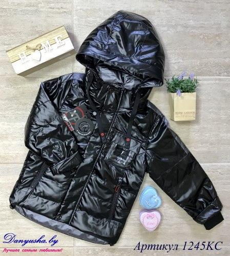 Деми куртка на мальчика модель - 1245KC