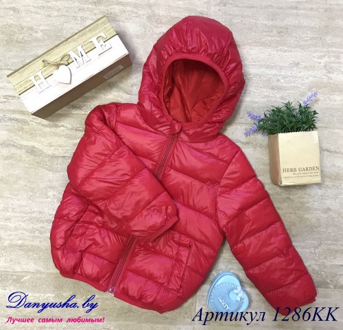 Куртка деми на мальчика модель - 1286KK