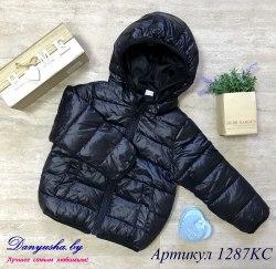 Куртка деми на мальчика модель - 1287KC