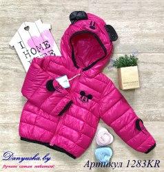 Куртка деми на девочку модель - 1283KR