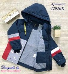 Деми куртка на мальчика модель - 1293KK