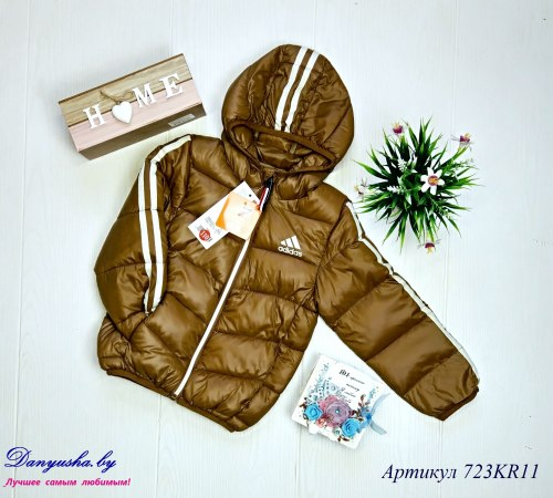 Куртка деми на мальчика модель - 723KR11