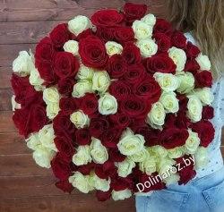 """Букет роз """"Красно-белый микс"""" 101 роза"""