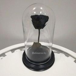 Роза в стеклянной колбе (черная) Mini