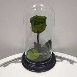 Роза в стеклянной колбе (зеленая) Mini