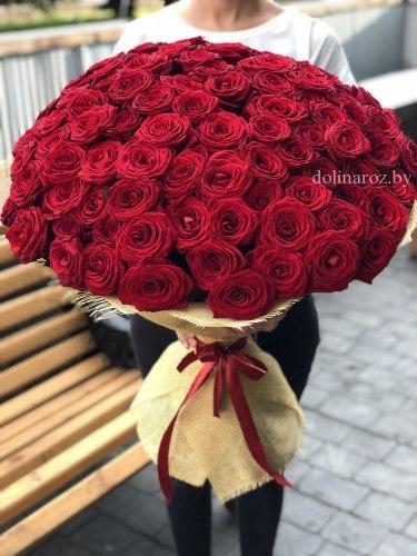 """Букет роз """"Red"""" 101 роза"""