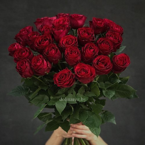 "Роза ""Madam Red"""