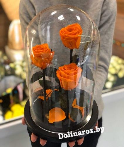 """Розы в колбе """"Трио"""" (оранжевая)"""