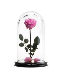 Роза в стеклянной колбе (розовая)