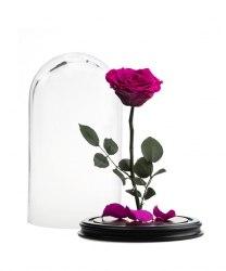 Роза в стеклянной колбе (ярко-розовая)