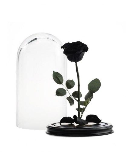Роза в стеклянной колбе (черная)