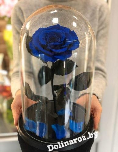 Роза в стеклянной колбе (синяя) VIP