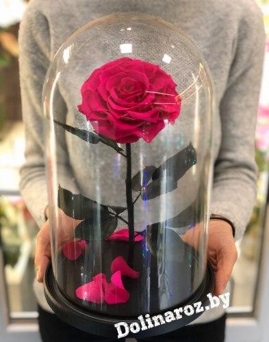 Роза в стеклянной колбе (ярко-розовая) VIP