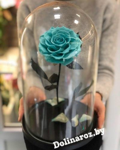 Роза в стеклянной колбе (тиффани) VIP