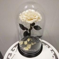 Роза в стеклянной колбе (белая) SuperVIP