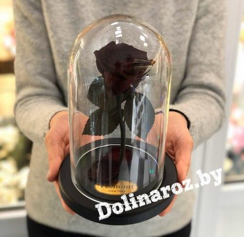 Роза в стеклянной колбе (темно-бордовая) Mini