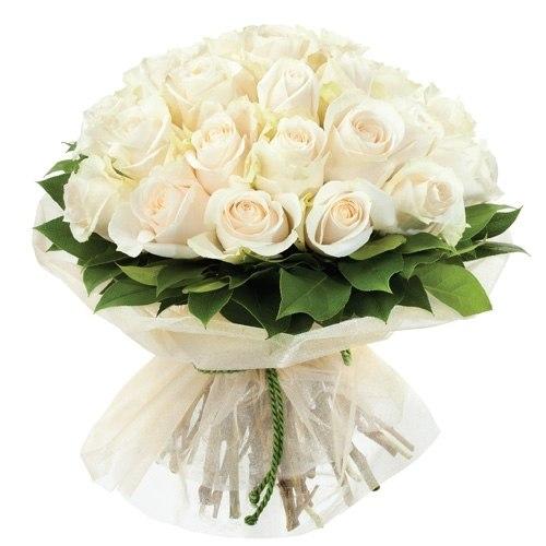 """Букет роз """"Красавчик"""" 25 роз"""