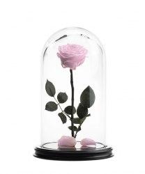 Роза в стеклянной колбе (светло-розовая)