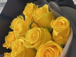 """Букет роз """"Торжество"""" 11 роз"""