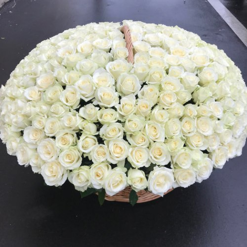 Корзина из белых роз 201 роза