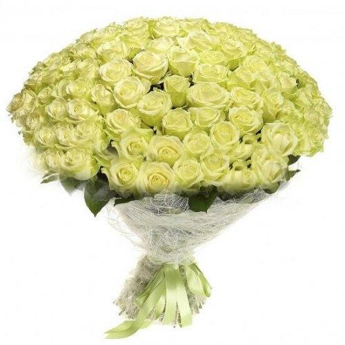 """Букет роз """"BigWhite"""" 151 роза"""