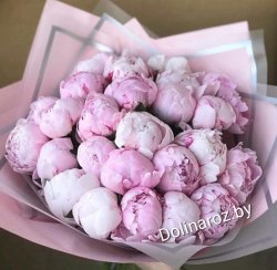 Букет 25 розовых пионв