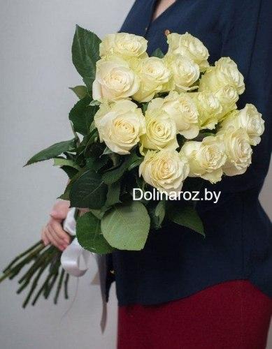 """Букет роз """"Мондиаль"""" 15 роз"""