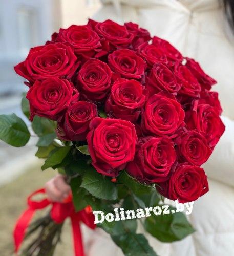 """Букет роз """"Комплимент"""" 21 роза"""