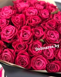 """Букет роз """"Мамба"""" 51 роза"""