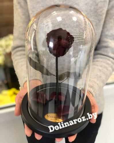 Роза в стеклянной колбе (темно-бордовая) Standart