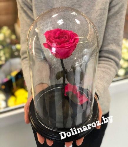 Роза в стеклянной колбе (ярко-розовая) Premium
