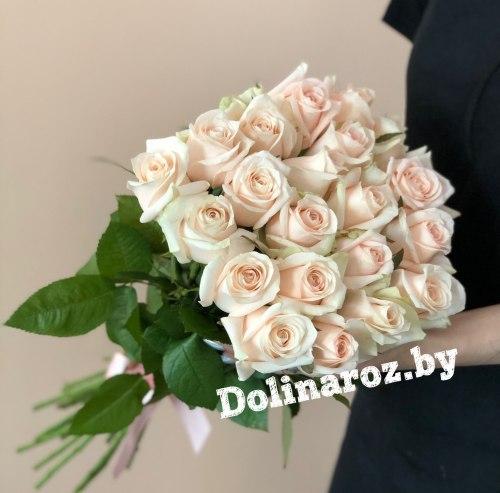 """Букет роз """"Сью"""" 21 роза"""