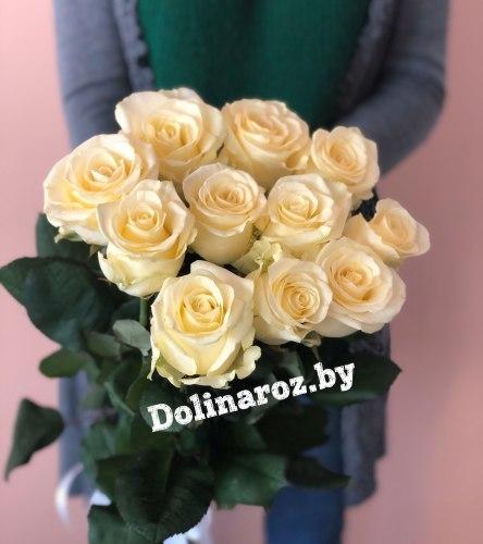 Букет роз «Анабель» 11 роз