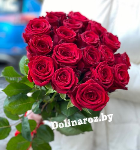 Букет роз «Дакота» 19 роз