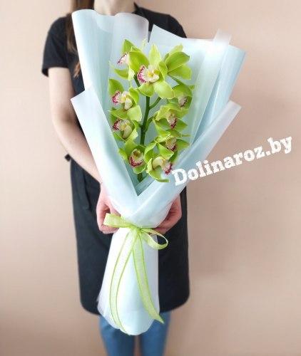 """Букет орхидей """"Зеленый"""""""