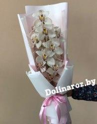 """Букет орхидей """"Белый"""""""