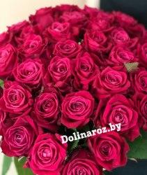 Букет роз «Шакира» 41 роза