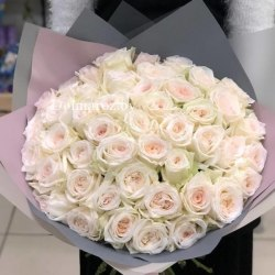 Пионовидная роза Уайт Охара (White Ohara)
