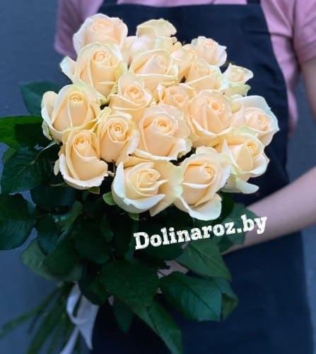 """Букет роз """"Нежный вечер"""" 19 роз"""