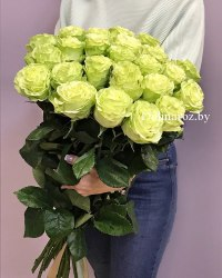 Роза Лимонад (Lemonade)