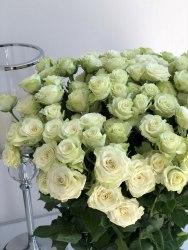 Кустовая роза Грин Глоу (Green Glow)