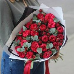 Пионовидная роза Ред Пиано (Red Piano)