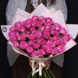 Кустовая пионовидная роза Классик Сенсейшн (Classic Sensation)