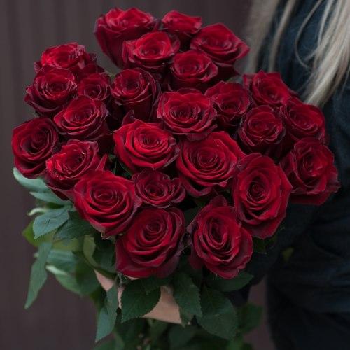 """Букет роз """"Эксплорер 25"""" 25"""