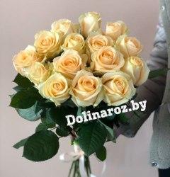 """Букет роз """"Кремовые"""" 15 роз"""
