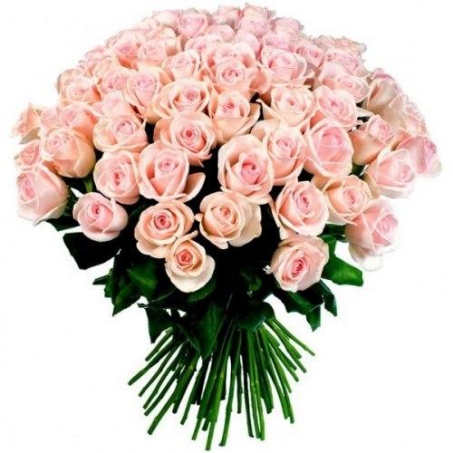"""Букет роз """"Sweet"""" 51 роза"""